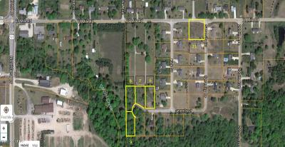 Big Rapids Residential Lots & Land For Sale: Unit 8 Serenity Drive