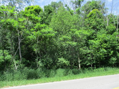 Benzie County, Charlevoix County, Clare County, Emmet County, Grand Traverse County, Kalkaska County, Lake County, Leelanau County, Manistee County, Mason County, Missaukee County, Osceola County, Roscommon County, Wexford County Residential Lots & Land For Sale: V/L S Lakeshore Drive #Unit 2
