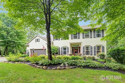 Rockford Single Family Home For Sale: 5313 Cristo Drive NE