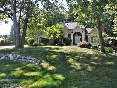 Big Rapids Single Family Home For Sale: 15191 Oakwood Drive