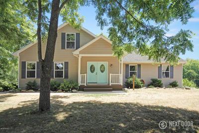 Freeport Single Family Home For Sale: 11257 Furlong Road