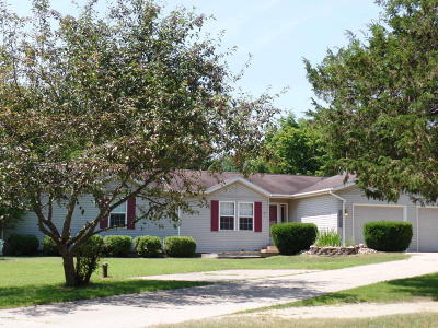 South Haven Single Family Home For Sale: 264 Glascow Grove