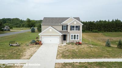Cedar Springs MI Single Family Home For Sale: $260,000