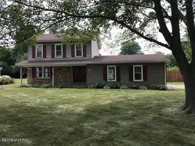 Schoolcraft Single Family Home For Sale: 527 West