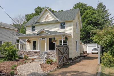 Allegan Single Family Home For Sale: 423 River Street