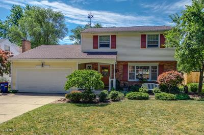 Grand Rapids Single Family Home For Sale: 1848 Plymouth Terrace SE