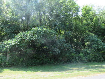 Middleville Residential Lots & Land For Sale: 10595 Sun Da Go Drive SE