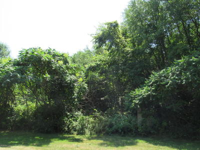 Middleville Residential Lots & Land For Sale: 10621 Sun Da Go Court SE
