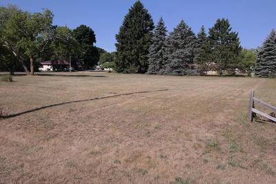 Evart Residential Lots & Land For Sale: 202 W Jefferson Street