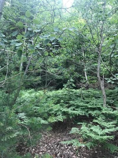 Grand Haven, Spring Lake, Ferrysburg Residential Lots & Land For Sale: Lot 1 168th Avenue