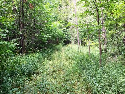 Harbert Residential Lots & Land For Sale: 6941 Youngren Road