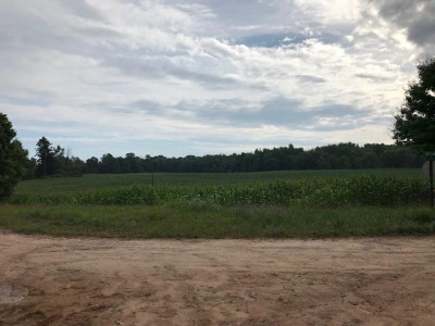 Shelby Residential Lots & Land For Sale: V/L W Hayes Road
