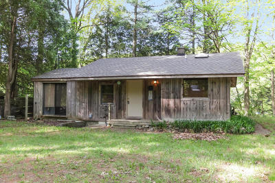 Newaygo Single Family Home For Sale: 4501 S River Street