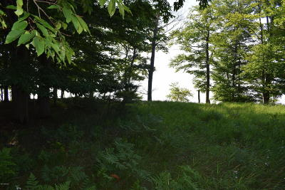Benzie County, Charlevoix County, Clare County, Emmet County, Grand Traverse County, Kalkaska County, Lake County, Leelanau County, Manistee County, Mason County, Missaukee County, Osceola County, Roscommon County, Wexford County Residential Lots & Land For Sale: Fox Farm Road #17
