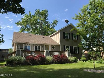 South Haven Single Family Home For Sale: 424 Elkenburg St