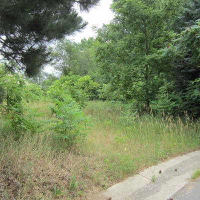 Byron Center Residential Lots & Land For Sale: 6982 Edgeview Avenue SW