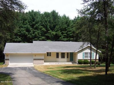 Cedar Springs MI Single Family Home For Sale: $260,000