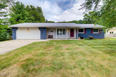 Holland, West Olive Single Family Home For Sale: 133 159th Avenue