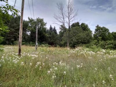 Stanwood Residential Lots & Land For Sale: 19014 11 Mile Rd Road