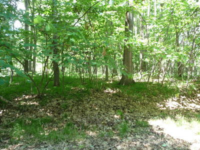 Canadian Lakes Residential Lots & Land For Sale: 8899 Rambling Way #221