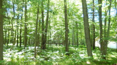 Canadian Lakes Residential Lots & Land For Sale: 6795 Cherry Court
