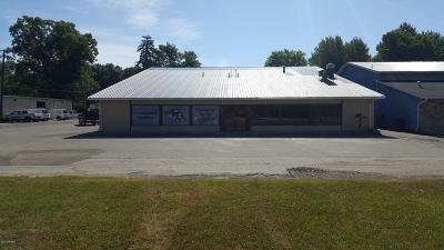 Berrien County Commercial For Sale: 2515 S 11th Street