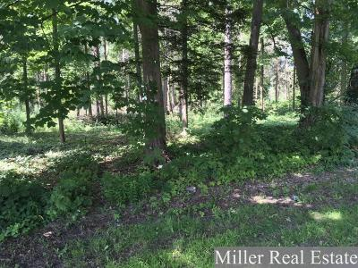 Hastings Residential Lots & Land For Sale: Vl Shriner St