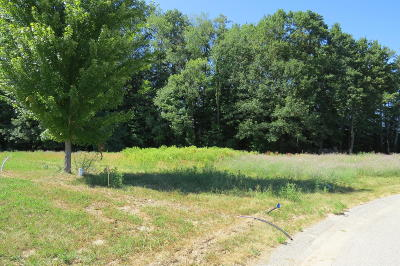 Hamilton Residential Lots & Land For Sale: Lot 9 River Court