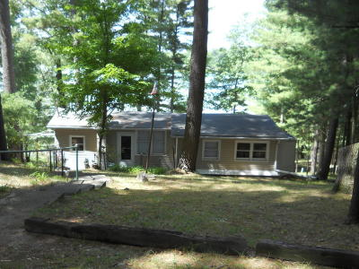 Sand Lake MI Single Family Home For Sale: $225,000