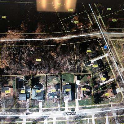 East Grand Rapids Residential Lots & Land For Sale: 2884 Lake Drive SE
