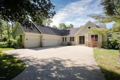 Kalamazoo County Single Family Home For Sale: 6229 East Bay Lane