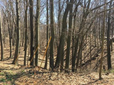 Grand Haven, Spring Lake, Ferrysburg Residential Lots & Land For Sale: 18280 North Shore Estates Road