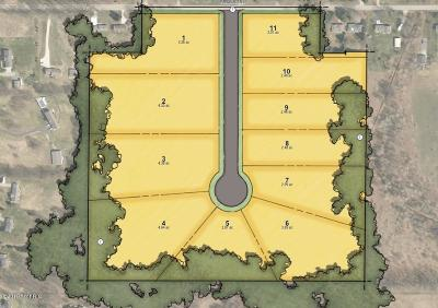 Residential Lots & Land For Sale: 7750 9 Mile Unit 1 Road #NE