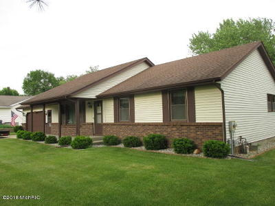 Otsego Single Family Home For Sale: 909 Windigo