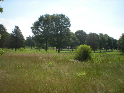 Berrien County Residential Lots & Land For Sale: 2831 Peachtree Lane #3