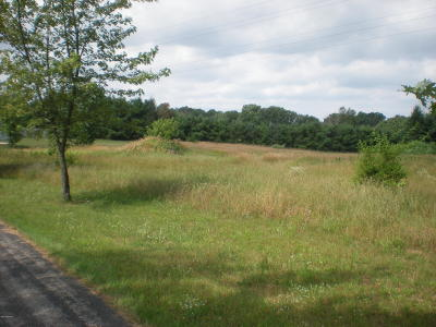 Berrien County Residential Lots & Land For Sale: 2748 Peachtree Lane #9