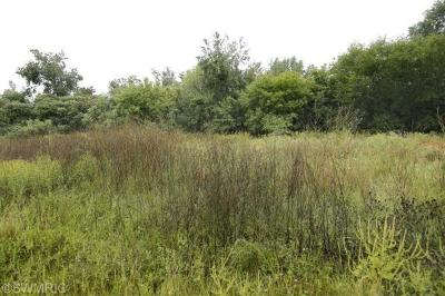 Martin Residential Lots & Land For Sale: Lot #8 Hidden Ponds Drive