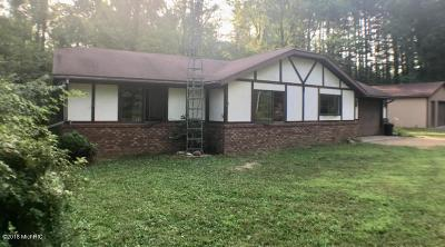 Paw Paw Single Family Home For Sale: 34840 Cr 653