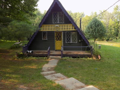 Evart Single Family Home For Sale: 23069 Miramichi Drive