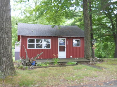 Sand Lake MI Single Family Home For Sale: $87,500