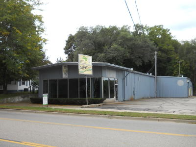 Greenville Commercial For Sale: 817 S Lafayette