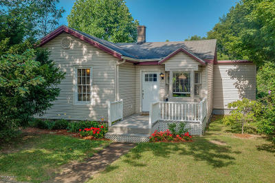 Three Oaks Single Family Home For Sale: 310 Sherwood Avenue