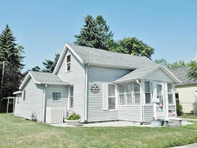 South Haven Single Family Home For Sale: 219 Superior Street