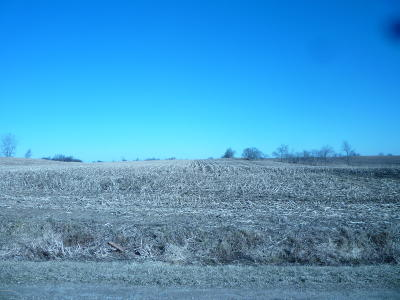 Clinton County, Gratiot County, Isabella County, Kent County, Mecosta County, Montcalm County, Muskegon County, Newaygo County, Oceana County, Ottawa County, Ionia County, Ingham County, Eaton County, Barry County, Allegan County Residential Lots & Land For Sale: 3635 Riley Street