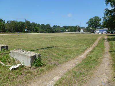 New Buffalo Residential Lots & Land For Sale: 19175 Us-12