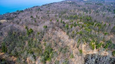 Muskegon County, Newaygo County, Oceana County, Ottawa County Residential Lots & Land For Sale: 00 Lost Valley Road