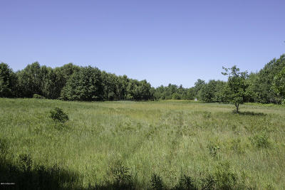 Benzie County, Charlevoix County, Clare County, Emmet County, Grand Traverse County, Kalkaska County, Lake County, Leelanau County, Manistee County, Mason County, Missaukee County, Osceola County, Roscommon County, Wexford County Residential Lots & Land For Sale: V/L Dorothy Rd.