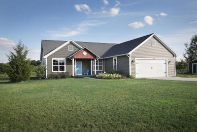 Mattawan Single Family Home For Sale: 10931 Pennycress Lane