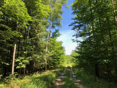 Benzie County, Charlevoix County, Clare County, Emmet County, Grand Traverse County, Kalkaska County, Lake County, Leelanau County, Manistee County, Mason County, Missaukee County, Osceola County, Roscommon County, Wexford County Residential Lots & Land For Sale: Potter Road #74.95 Ac