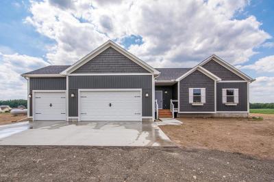Sand Lake Single Family Home For Sale: 14125 Elm Avenue